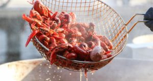 crawfish-2606517_960_720